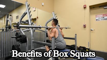 Benefits of Box Squats